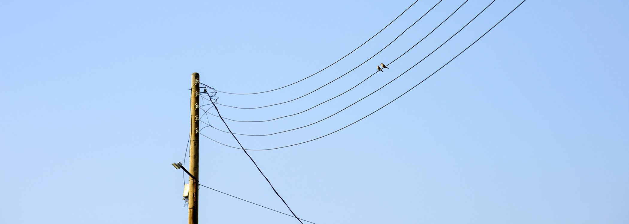 utility-pole-inspection-2.jpg