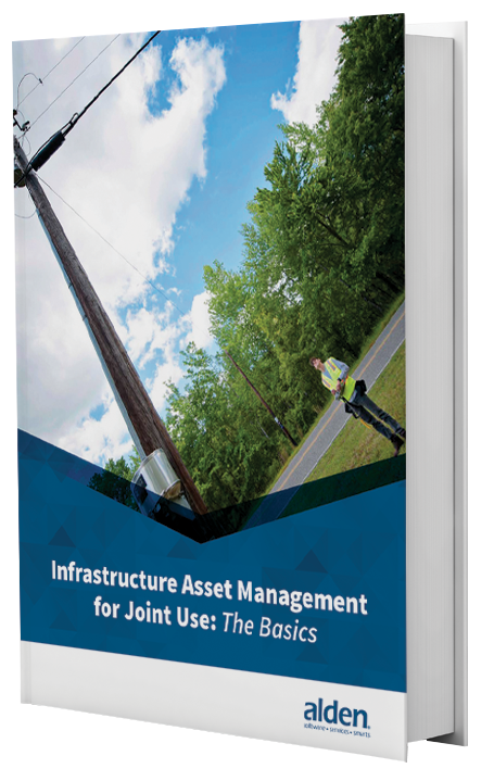 Infrastructure Asset Management for Joint Use: EBOOK