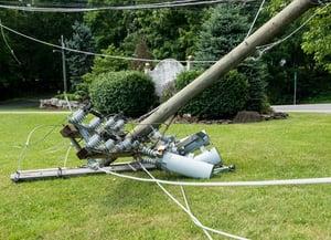 fallen utility pole